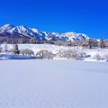 Photos: ~厳冬雪景~冬晴れの朝