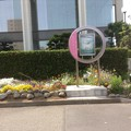 Photos: 音楽座「泣かないで」町田市民ホール
