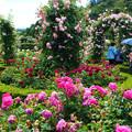 花咲ファーム