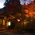 鍬山神社 ライトアップ