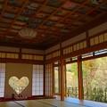正寿院 客殿の猪目窓と花の天井画