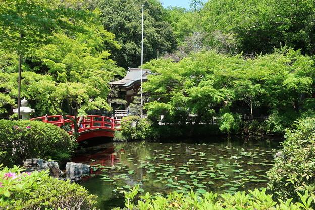 Photos: 貫井神社