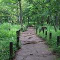 Photos: 浅間山公園