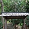 Photos: はけの森美術館2