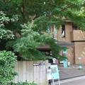 Photos: はけの森美術館