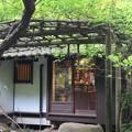 Photos: はけの森カフェ