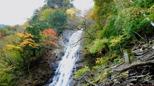 丸神の滝2