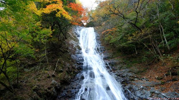 丸神の滝1