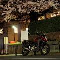 V-スト夜桜ショット!