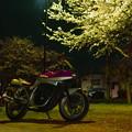 夜桜カタナショット!