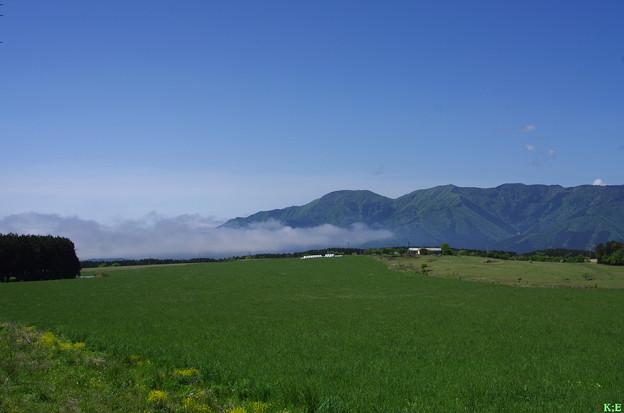 草原と雲海