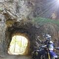 Photos: 林道トンネル