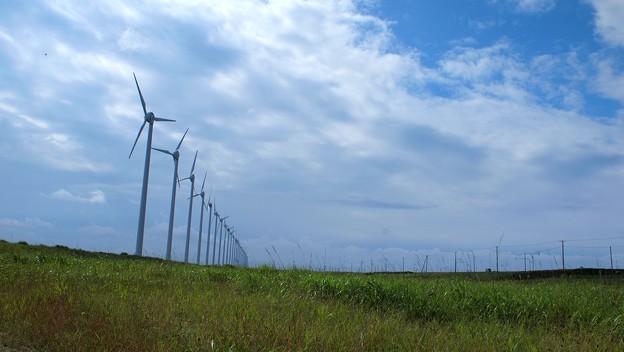 稚内 風車