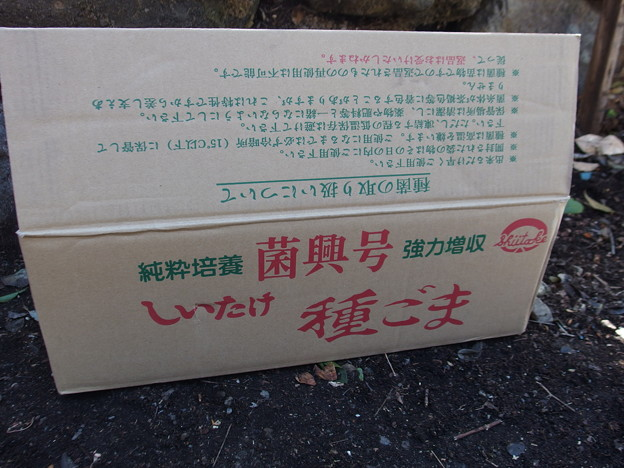 P2180715