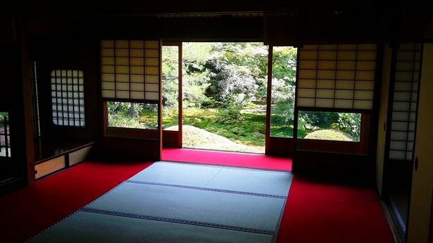 畳、窓、赤い絨毯