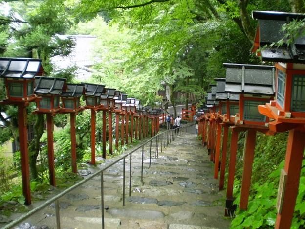 毎年新緑が美しい貴船神社の階段
