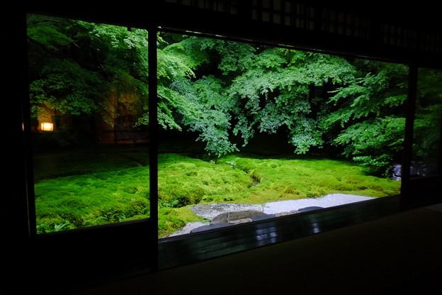 瑠璃光院の二階の新緑とテーブルも美しいけど、一階から眺める景色も絶景
