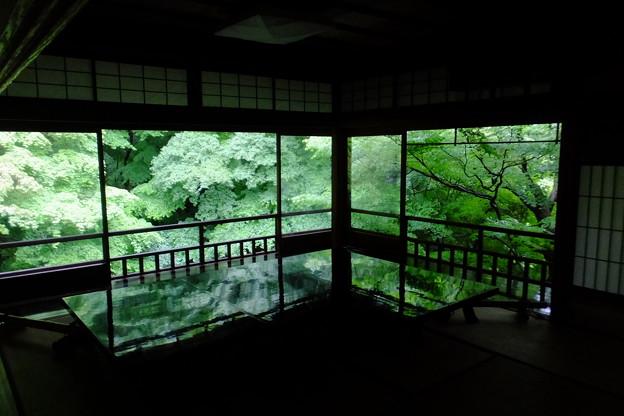 瑠璃光院の新緑、テーブルの間その3