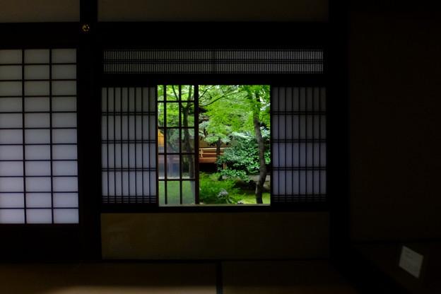 窓の向こうに緑あり、京都で撮影した京都的景色