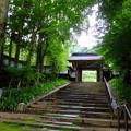 Photos: 緑が美しい山門