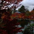 京都の紅葉人気ランキングでたびたび一位になるほど有名で定番の京都東山永観堂