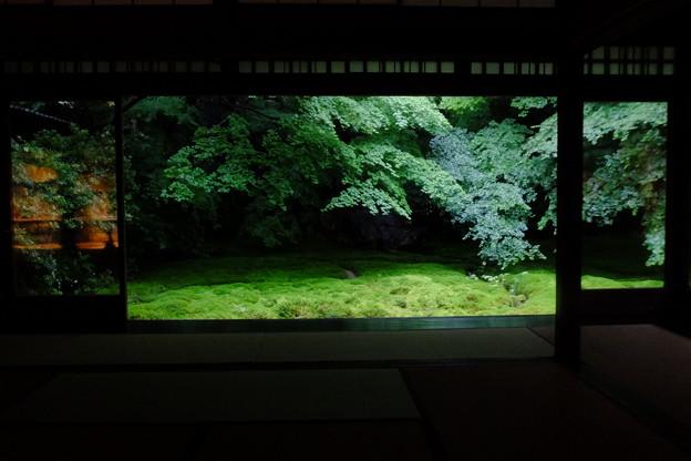 Photos: 静寂