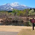 Photos: いもり池