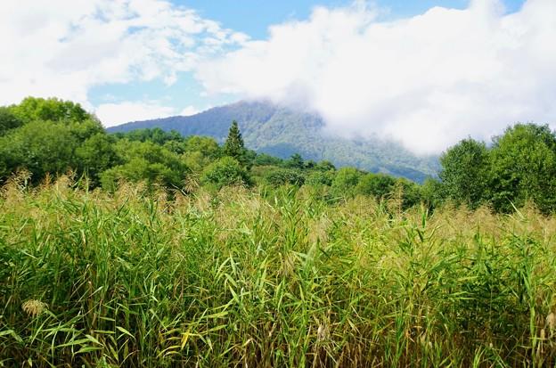秋の飯縄山