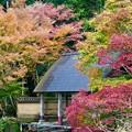 写真: 日本昔話