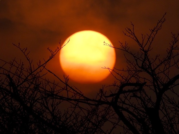 赤色に染めゆく太陽