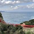 Photos: panorama元の隅稲荷神社