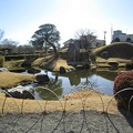 Photos: 方丈からの庭の様子