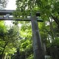Photos: 神社の鳥居