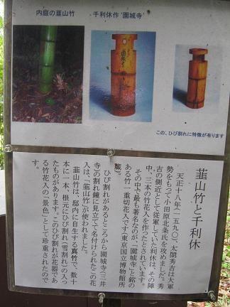 韮山竹と千利休の解説版
