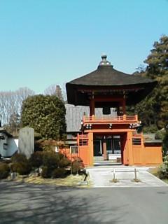 桂福寺 山門