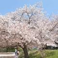 石手川緑地1