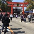 Photos: お天気いいけど・・・