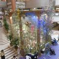 写真: 宝塚ソリオの七夕