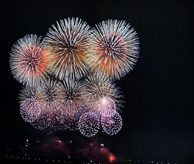 新潟長岡の花火