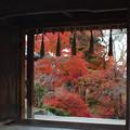 Photos: 秋の途