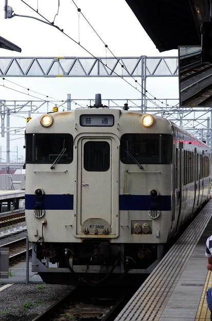 IMGP9435 (2)