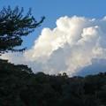 夏の終わりの入道雲