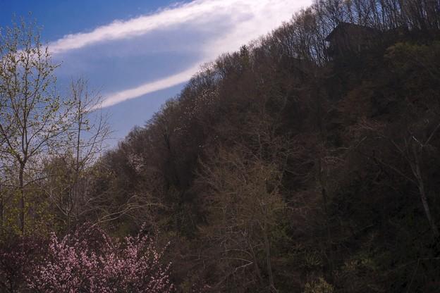 坂の上の家・春
