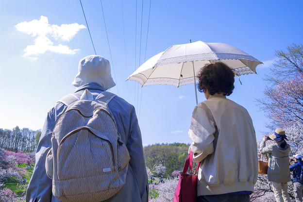 梅見遊山 ■■■■