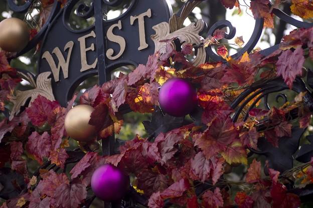 「秋は西へ」