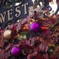 写真: 「秋は西へ」