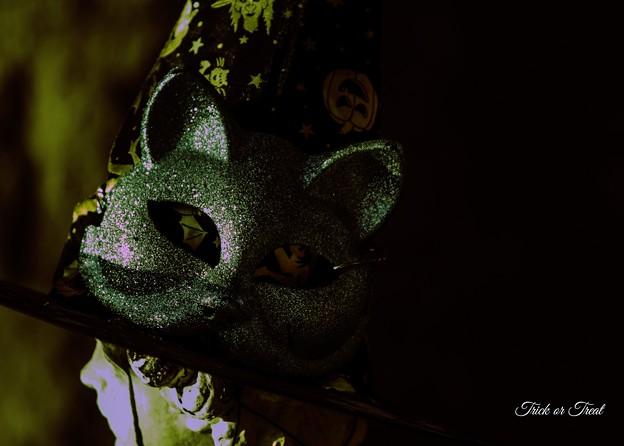 写真: ハロウィーンの準備 4