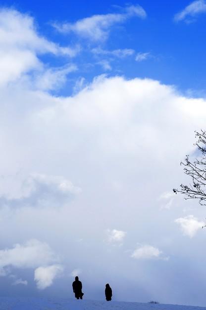 丘のある公園/新春