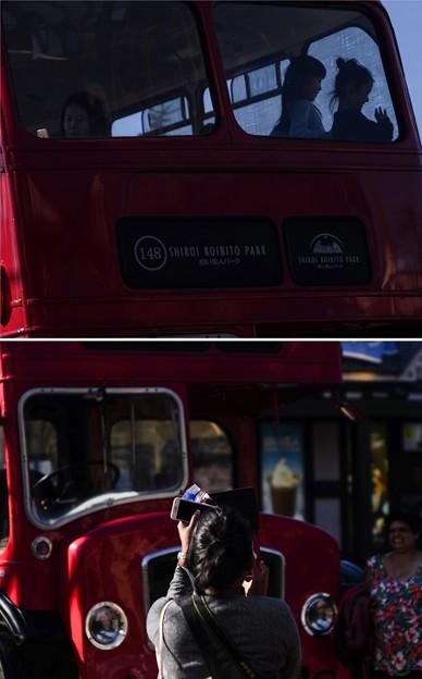 Photos: London bus in Sapporo
