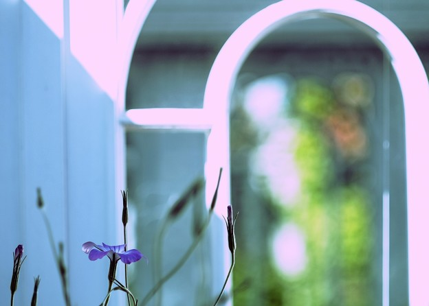 window-glass inside and outside